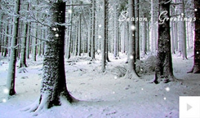 slient timbers holiday e-card thumbnail