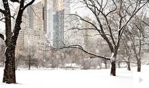 City Park ecard