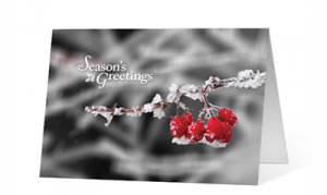 A Moment Of Winter Holiday Greeting Card