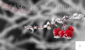 A Moment Of WinterUp Holiday e-card thumbnail