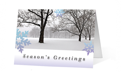 Peaceful Forest Moments Greeting Christmas Card