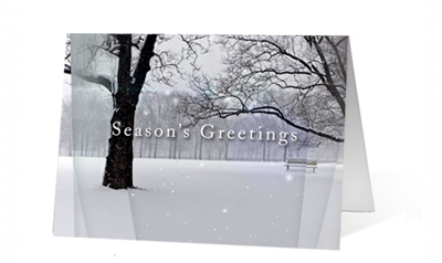 Nature Park Views Greeting Christmas Card